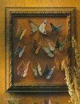 Маленькие бабочки крючком.  Коллекция от Podarok, zhenskij zhurnal.