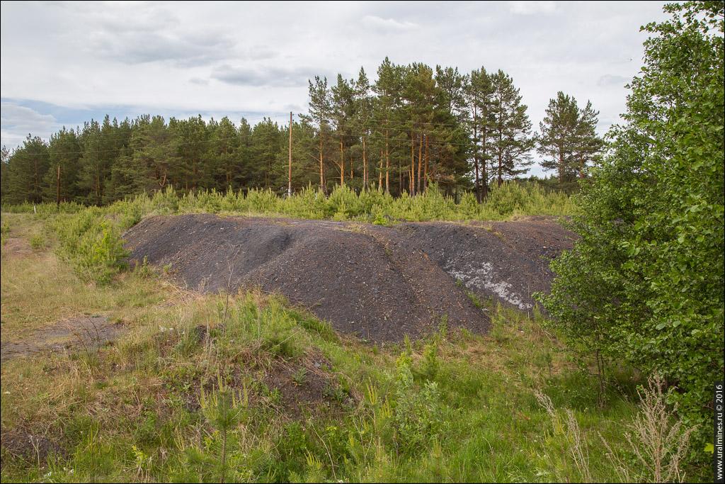 Угольная копь Клара-Лара (Елкинская или Алтынайская)