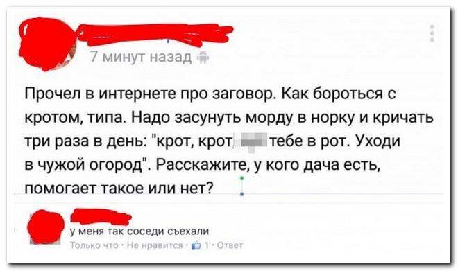 Смешные комментарии из социальных сетей 13.06.16
