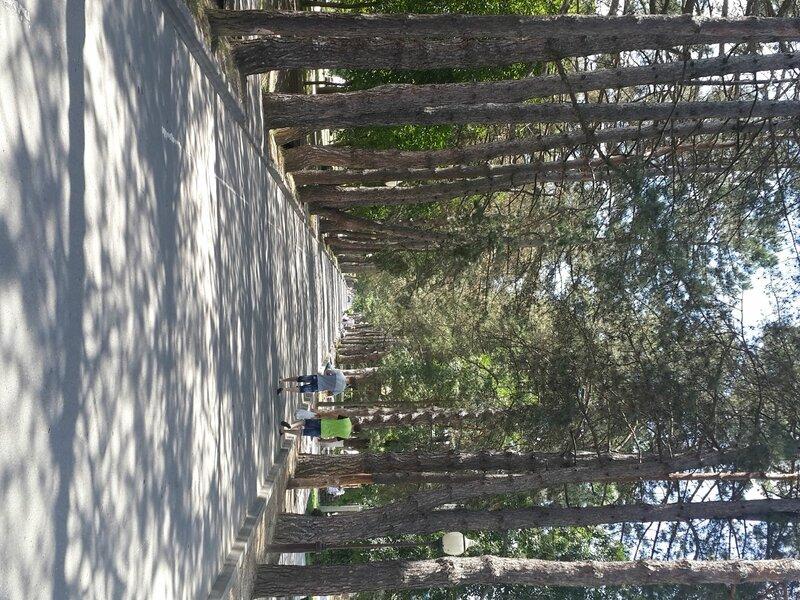 Пешие и велопрогулки по Краснодару - ищу компаньонов - Страница 4 0_80faf_f77b5ea2_XL