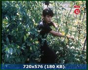 http//img-fotki.yandex.ru/get/45443/170664692.8b/0_160962_209fe580_orig.png