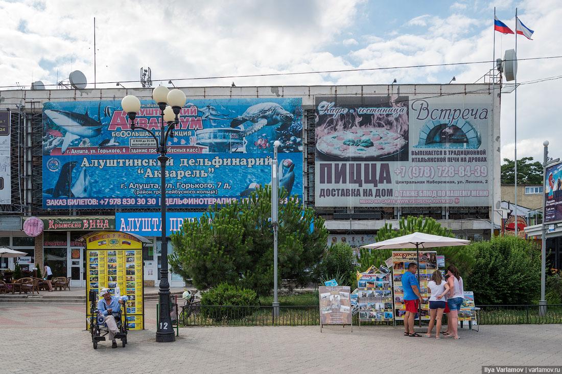 31. В каждом крымском городе есть дельфинарий. Переживаю за дельфинчиков… В каких условиях они