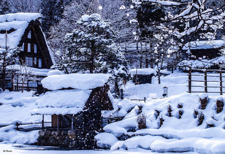 14. Если вы любите снег, то зима здесь вам понравится