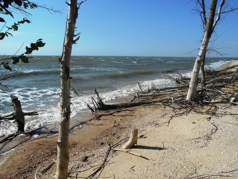 Море, ветер... DSCN6913.JPG