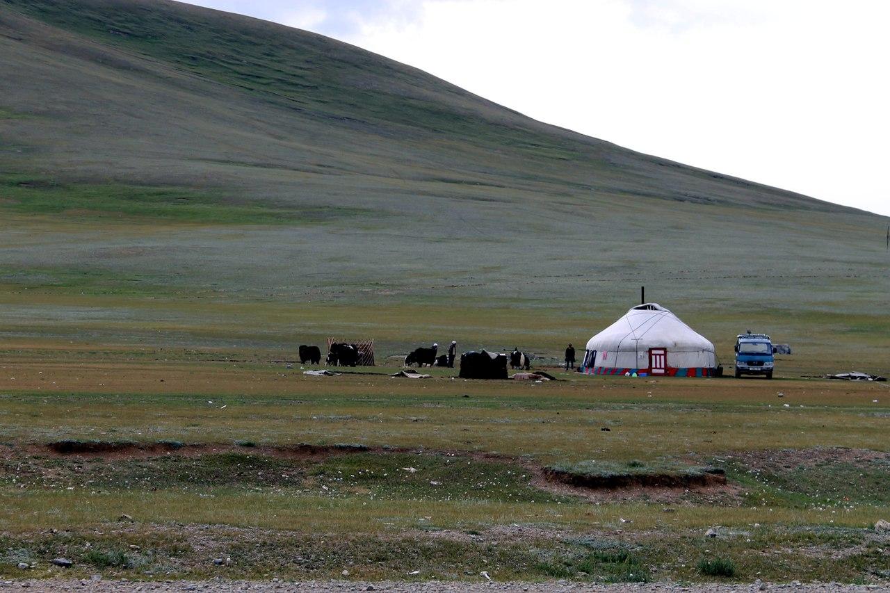 ваши интересы в монголии