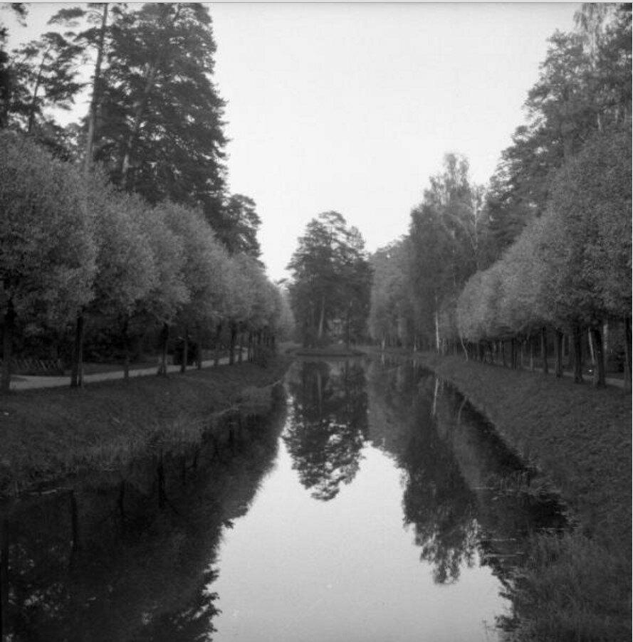 1904. Путяевский пруд в Сокольниках