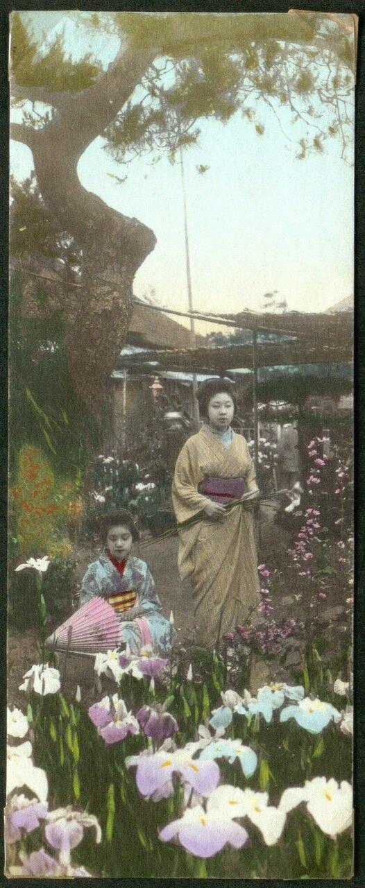 Две молодые женщины в саду