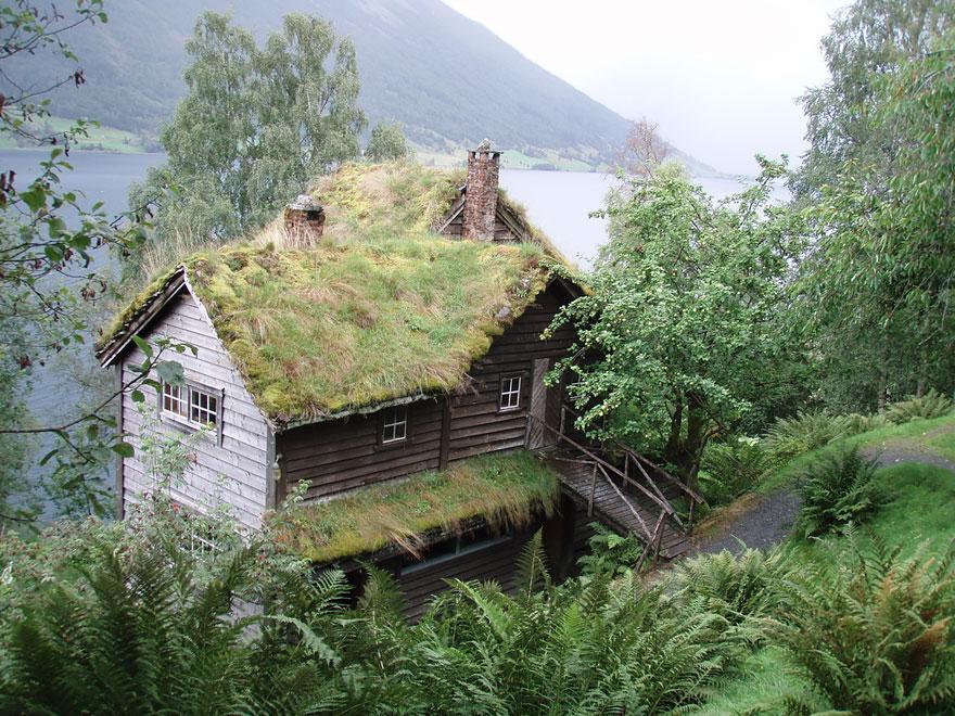 Удивительные скандинавские дома с озелененными крышами