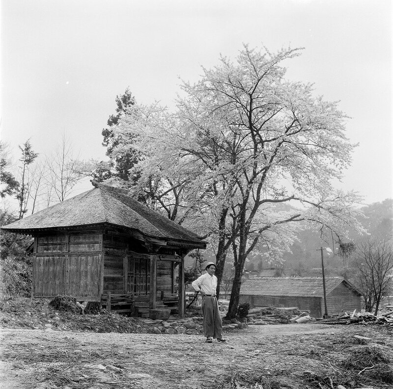Old Wooden Building, Guy & Blooming Tree - 1950s Japan