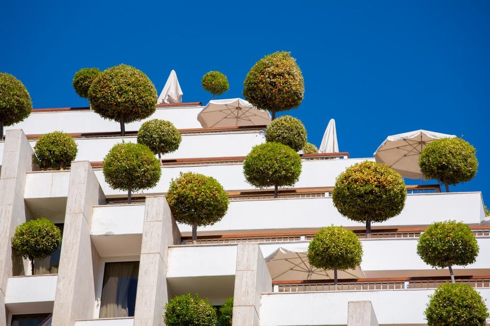 Здание вЭйлате украшено шарообразными деревьями ивыглядит очень жизнерадостно. Кроме внимания прох