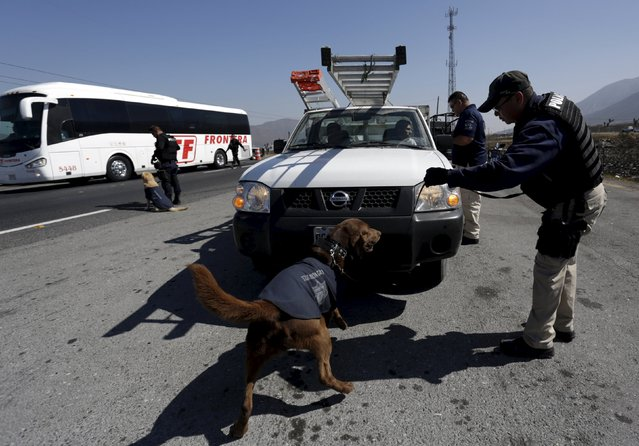 Police officers and his re-trained dog inspect a vehicle at a security checkpoint in Saltillo, Mexic