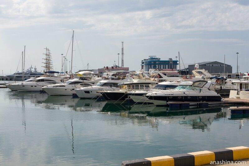 Катера, Морской порт Сочи
