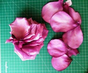 Роза - царица цветов 3 - Страница 16 0_13e338_22557905_M