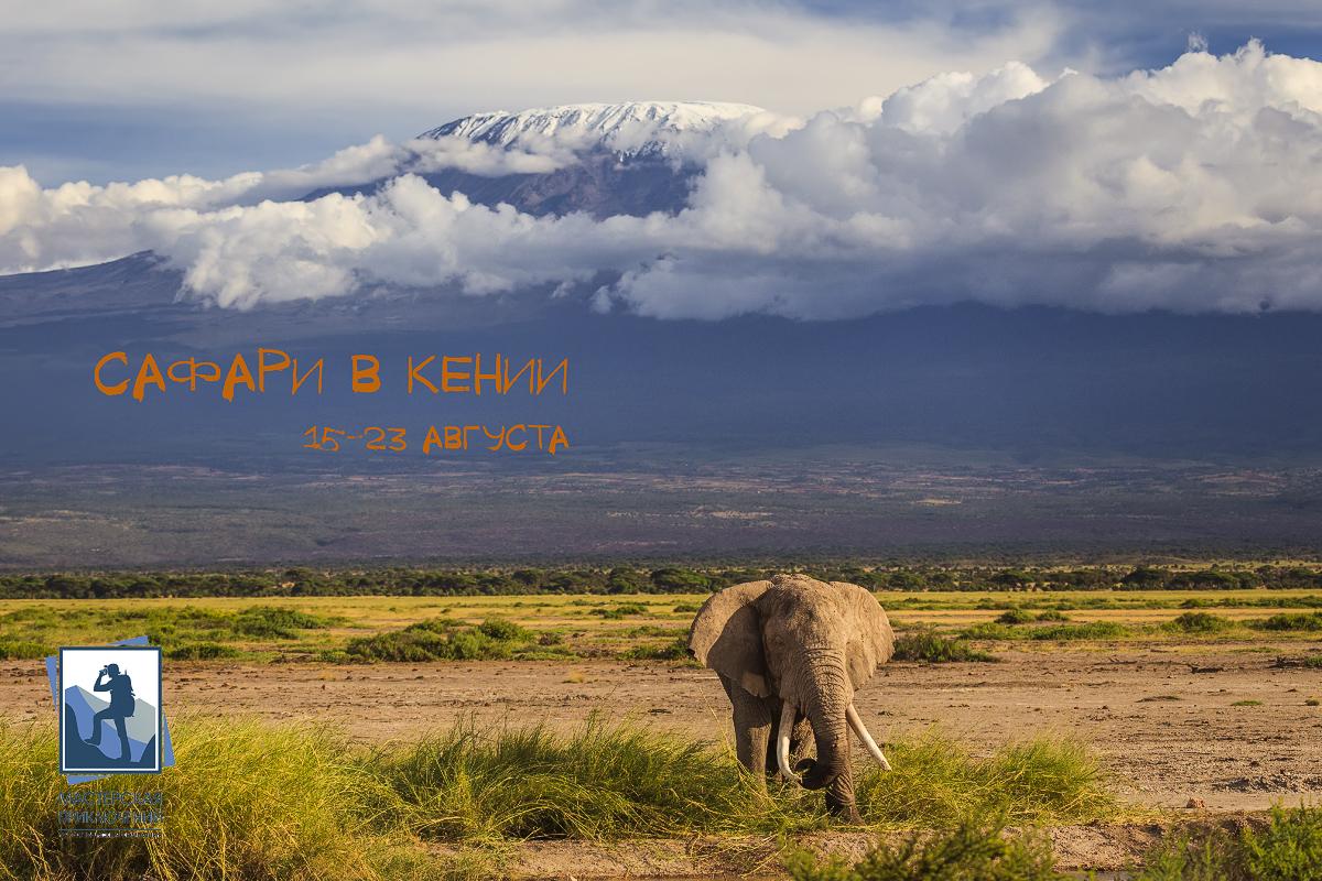 Сафари в Кении 15 - 23 августа