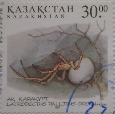 1997 № 194 белый каракут Фауна Казахстана Ядовитые насекомые пустыни 30
