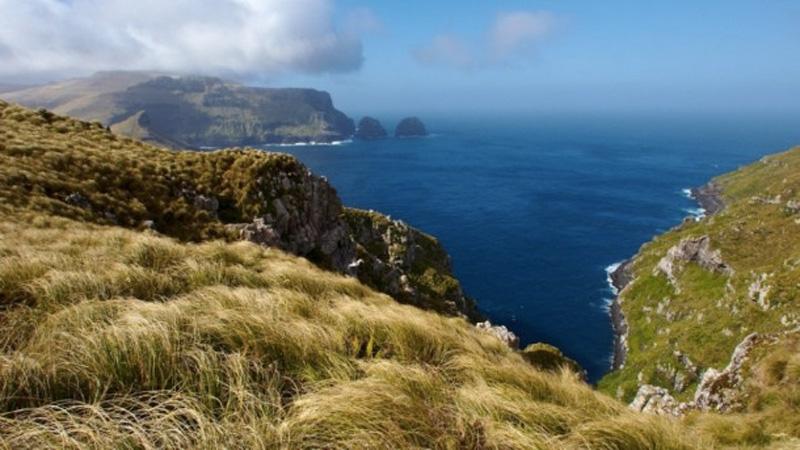 Эта группа островов, расположенная к югу от Южного острова Новой Зеландии. Если здесь кто-то когда-т