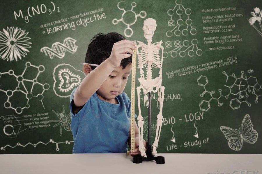 Интеллект ребенка зависит отматери— Ученые