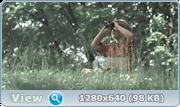 http//img-fotki.yandex.ru/get/404/40980658.1cc/0_154ac5_1d38c975_orig.png