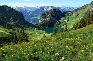 Лето катится с горы