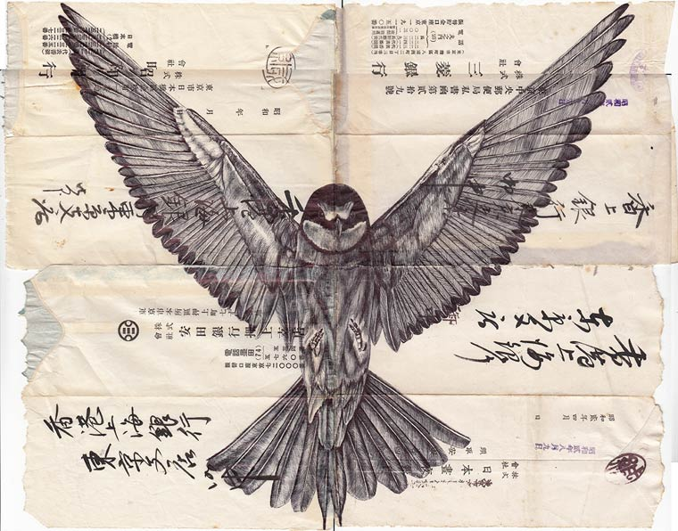 Bird Collection - The beautiful illustrations on old paper by Mark Powell
