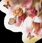 бабоч-60012.png