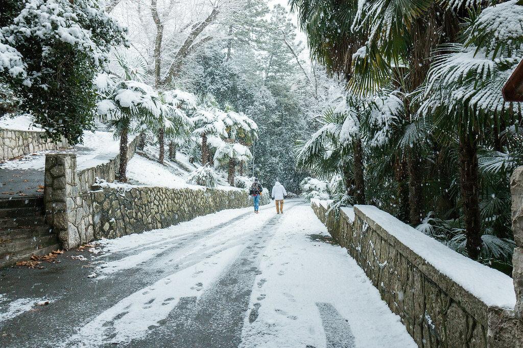 абхазия в январе отзывы фото устанавливаем бескаркасные модели