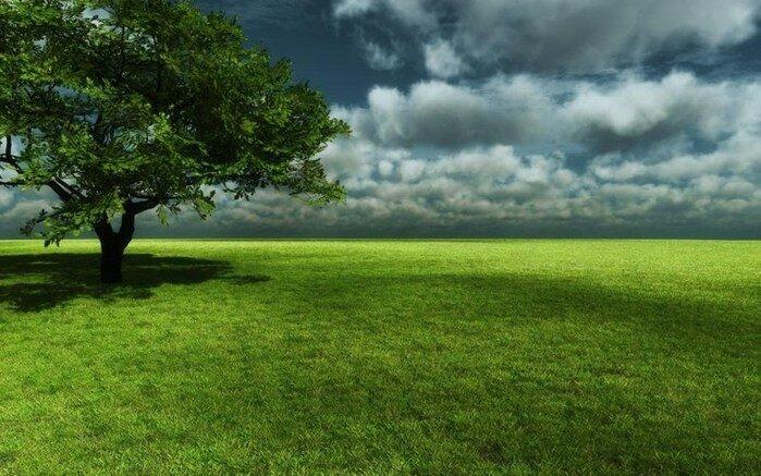 Пейзажи (больше 80 картинок)