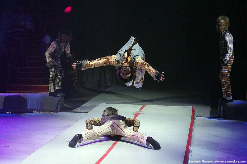 Осень. Цирковой мюзикл Мр Тигр. 23.10.15.18..jpg