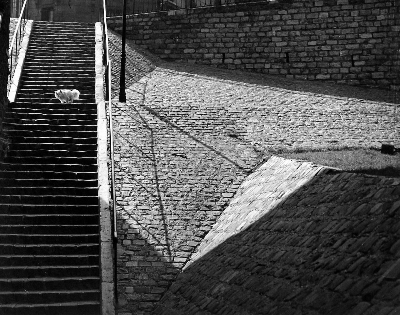 1932. Лестница на Монмартре