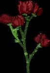 «dainty_love» 0_7d451_98b8f360_S