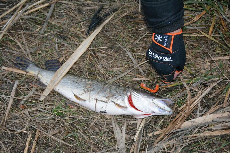 Рыбалка в неклиновском районе