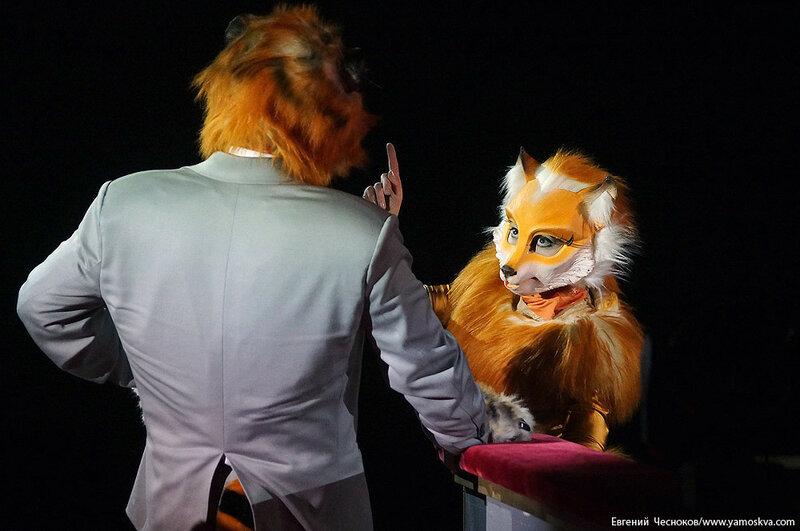 Осень. Цирковой мюзикл Мр Тигр. 23.10.15.36..jpg