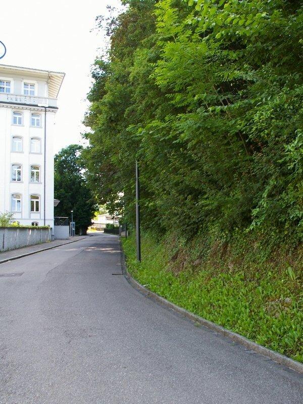 Бодензейские смотрины 1. Шафхаузен. (120 фото).