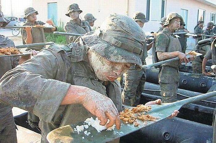 Смешные картинки про питание в армии, смешные картинки