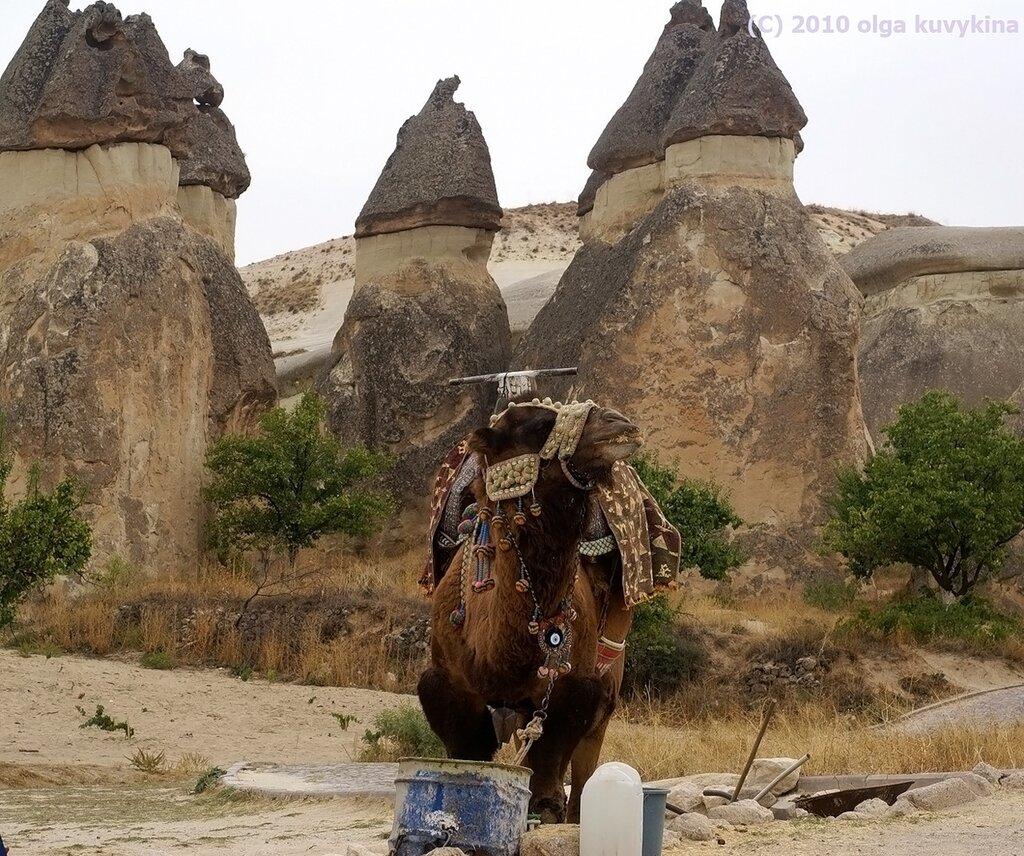 Долина Виноградники Паши, Каппадокия, Турция