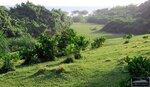 Tambling (Lampung, Sumatra)