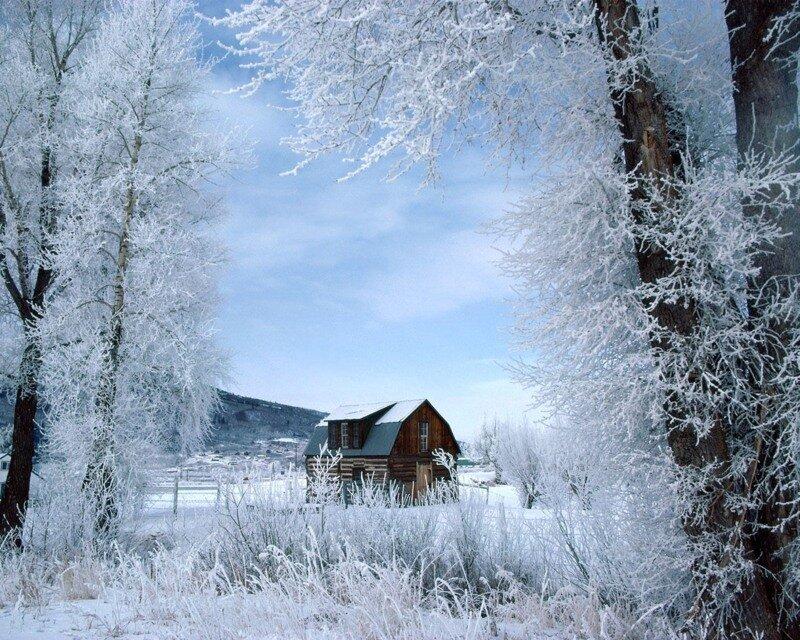 DataLife Engine Версия для печати Немного зимней красоты.