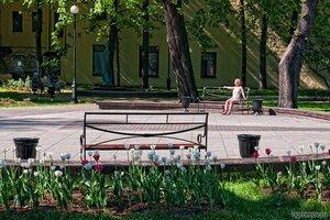 Наслаждение солнцем (лето, скамья, сквер композитора Андрея Петрова, урна, человек)