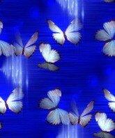 фея у воды(синий фон бабочки)