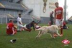 Гол Давыдова принес Спартаку победу над Анжи в контрольном матче