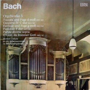 J.S. Bach. Orgelwerke Auf Silbermannorgeln 3 (1976) [ETERNA, 8 25 601]