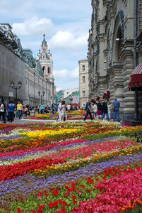 https://img-fotki.yandex.ru/get/4601/44636088.3d/0_c8681_b4b9b2bf_M.jpg