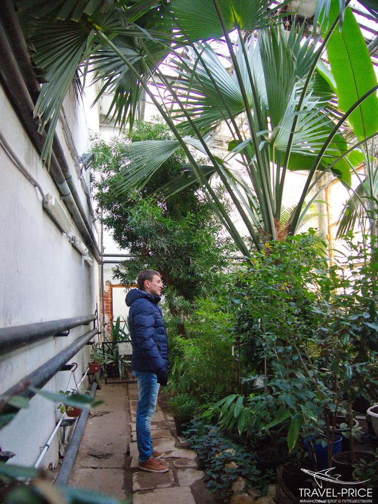 ботанический сад в Казани