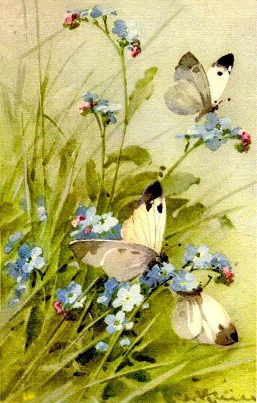 К. Кляйн. 12. Бабочки и незабудки.