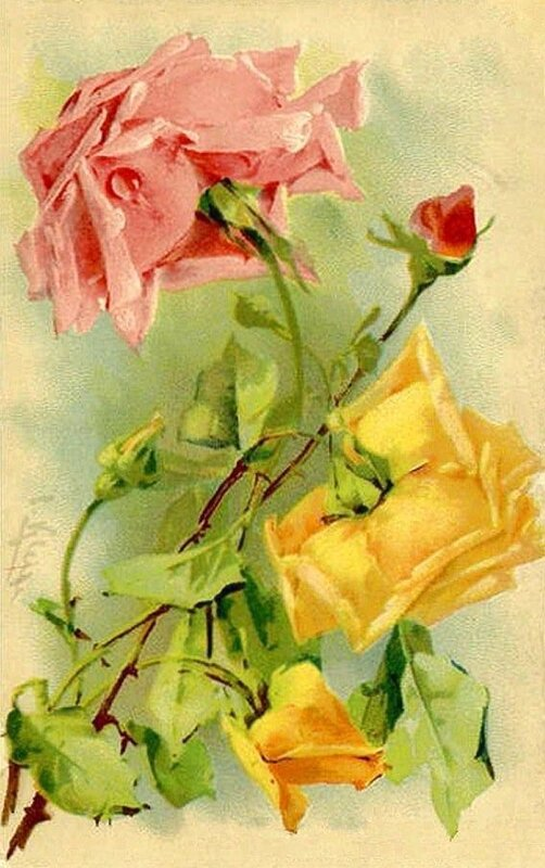 К. Кляйн. 85. Розы.
