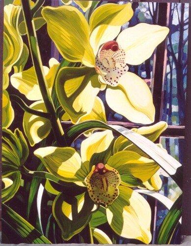цветение орхидей
