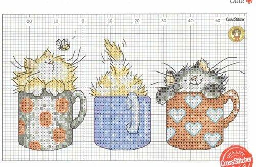 котята в чашках