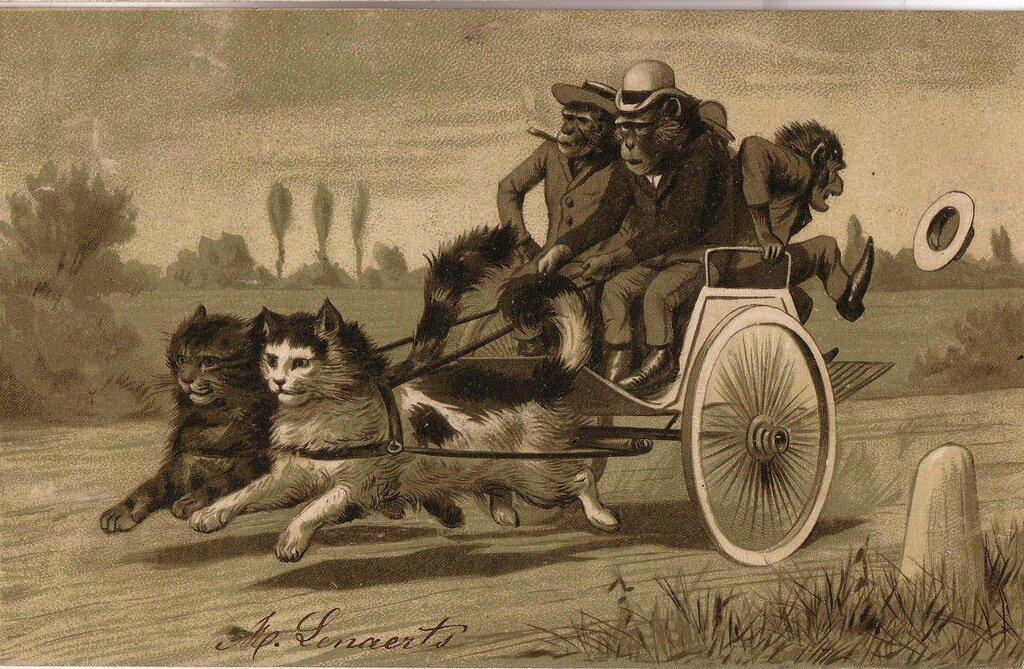 Старинные немецкие открытки с кошками