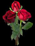 «романтические скрап элементы» 0_7d9f0_b59a0be6_S