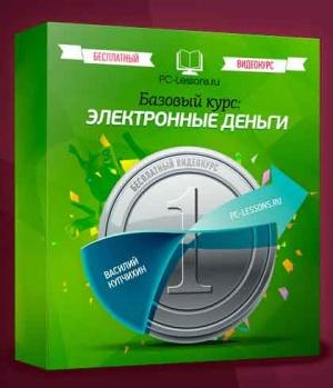 Книга Электронные деньги. Базовый курс (2013)(видеокурс)